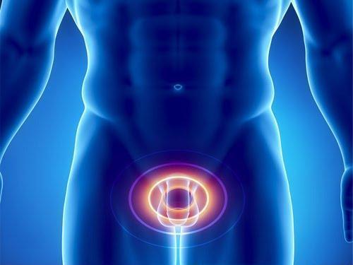 Папилломы в паху у мужчин: симптомы, как выглядят и, как лечить