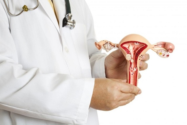 Аденоматозный полип эндометрия: что это такое, методы лечения
